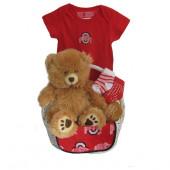 Ohio State Buckeyes Baby Gift Basket  ***TOUCHDOWN***
