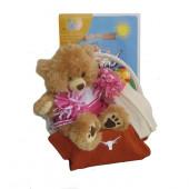 Texas Longhorns Baby Girl Gift Basket  ***TOUCHDOWN***
